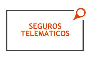 serviloc-gestion-de-flotas-mantenimiento-seguros-telematicos